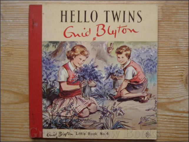 Image for HELLO TWINS