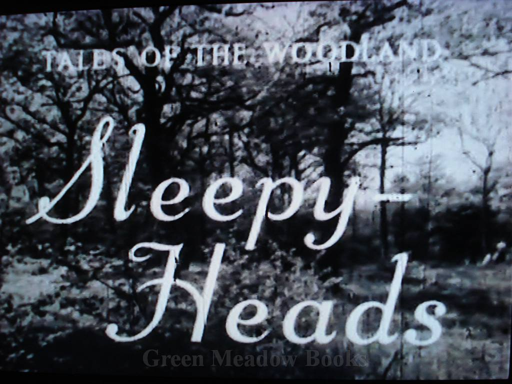 Image for TALES OF THE WOODLAND   SLEEPY-HEADS    A FILM  (on disc)