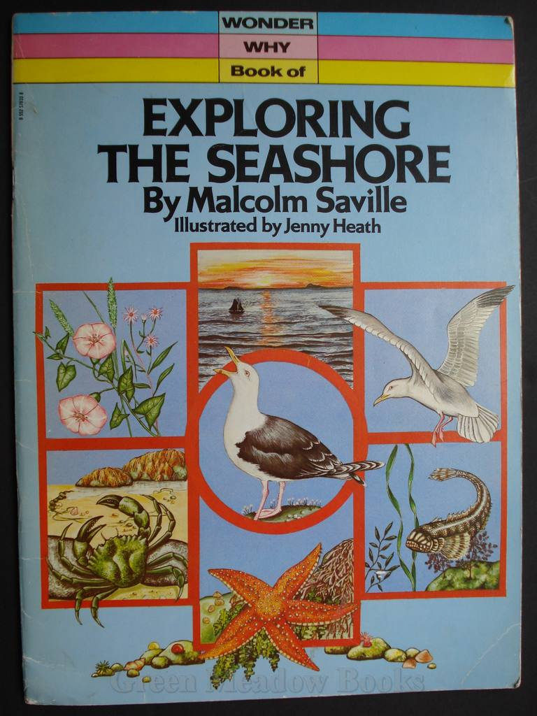 Image for EXPLORING THE SEASHORE    A WONDER WHY BOOK