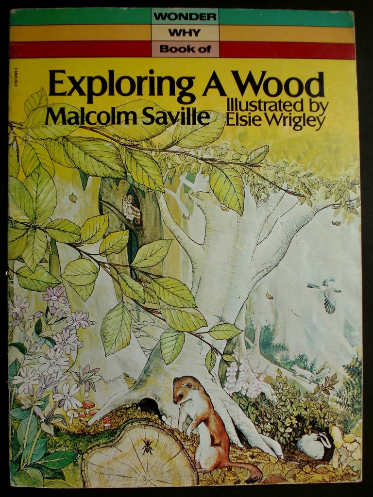 Image for EXPLORING A WOOD     A WONDER WHY