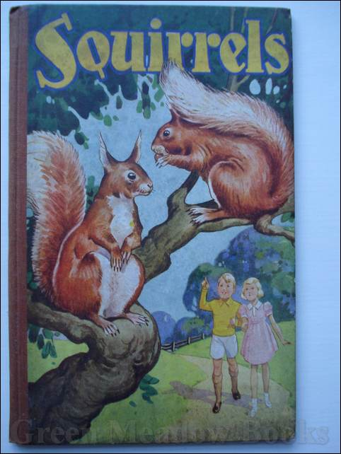 Image for SQUIRRELS - A WOODLAND STORY FOR GIRLS AND BOYS