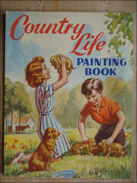 Image for COUNTRY LIFE PAINTING BOOK